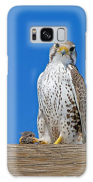 Prairie Falcon With Mouse Galaxy Case by Stephen  Johnson