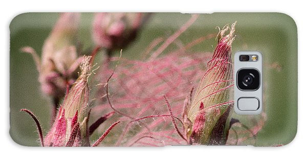 Prairie Smoke Galaxy Case