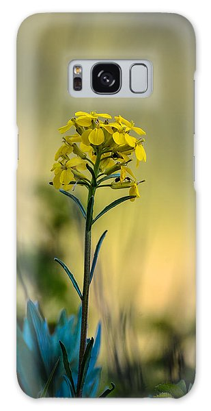 Pretty As A Wallflower Galaxy Case
