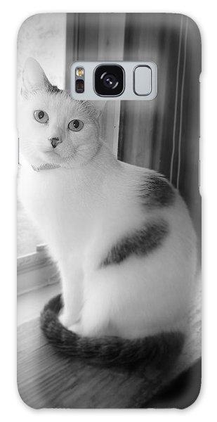Pretty Kitty Galaxy Case