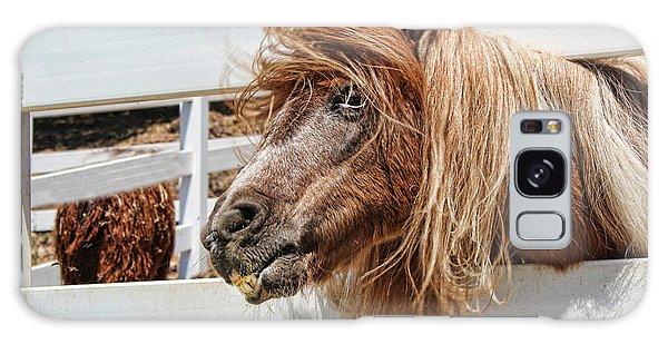 Pretty Pony After Galaxy Case