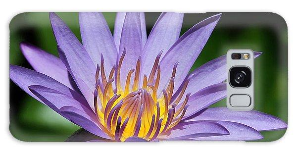 Pretty Purple Petals Galaxy Case