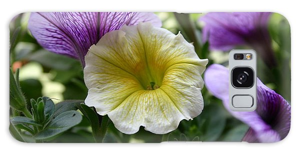Pretty Yellow And Purple Petunias Galaxy Case by D Wallace