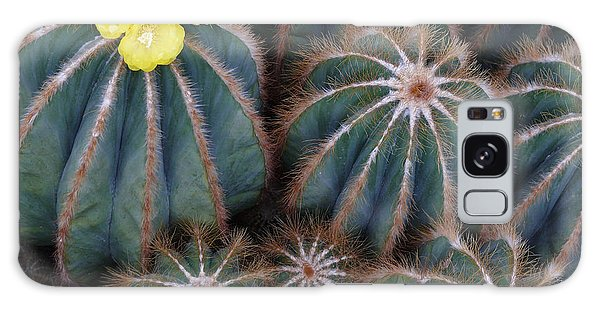 Prickly Beauties Galaxy Case by Evelyn Tambour