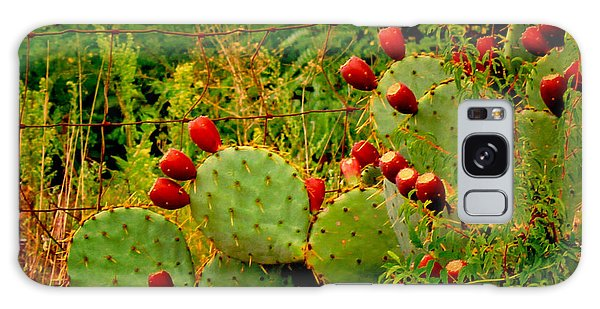 Prickly Pear Cactus Galaxy Case