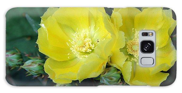 Prickly Pear Cactus Flowers No. 3 Galaxy Case