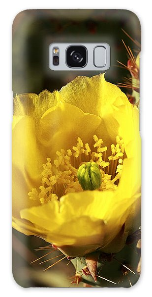 Prickly Pear Flower Galaxy Case by Alan Vance Ley