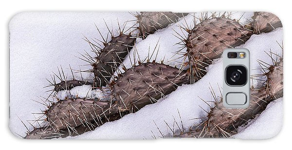 Prickly Pear On Ice Galaxy Case