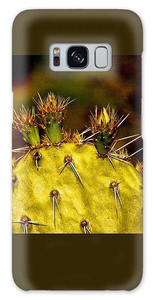 Prickly Pear Spring Galaxy Case