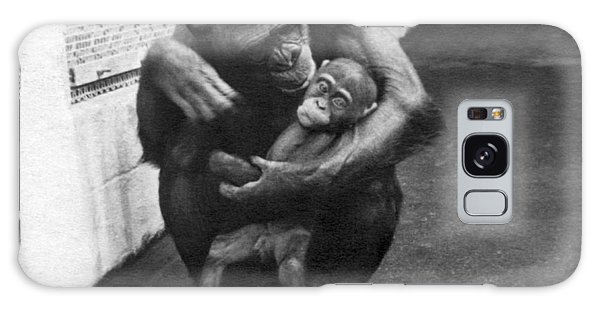 Behaviour Galaxy Case - Primate Discipline by Underwood Archives