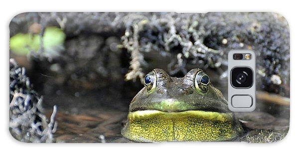 Bullfrog Galaxy Case by Glenn Gordon
