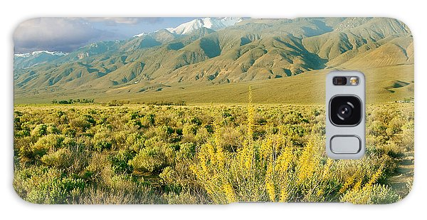 Princes Plume And White Mountains - Owens Valley California Galaxy Case
