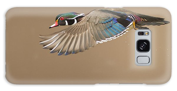 Probably The Most Beautiful Of All Duck Species Galaxy Case by Mircea Costina Photography