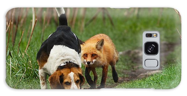 Probably The World's Worst Hunting Dog Galaxy Case by Mircea Costina Photography