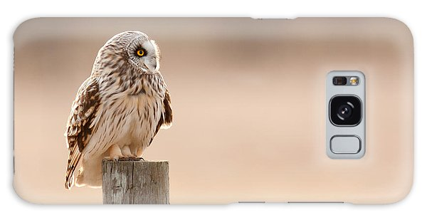 Profile Of A Short-eared Owl 1 Galaxy Case