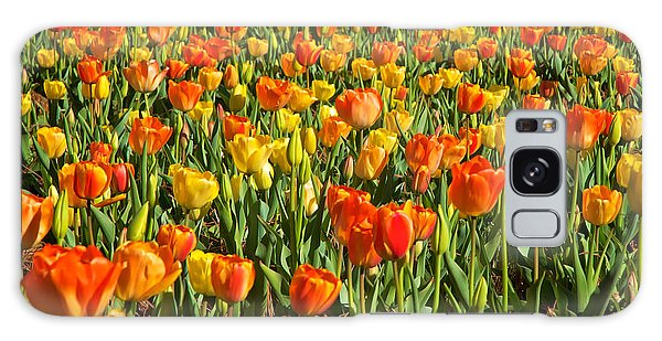 Profusion Of Tulips Biltmore Estate Nc Galaxy Case by Mary Lee Dereske