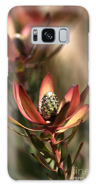 Protea  Galaxy Case by Joy Watson