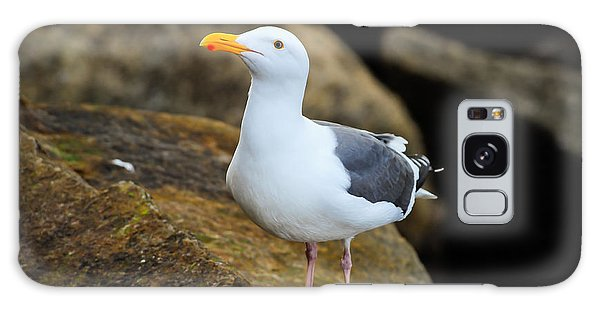 Proud Seagull Galaxy Case