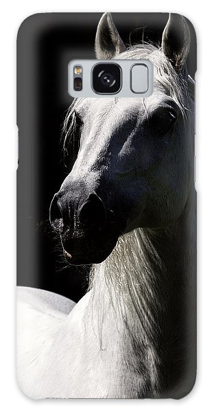 Proud Stallion Galaxy Case