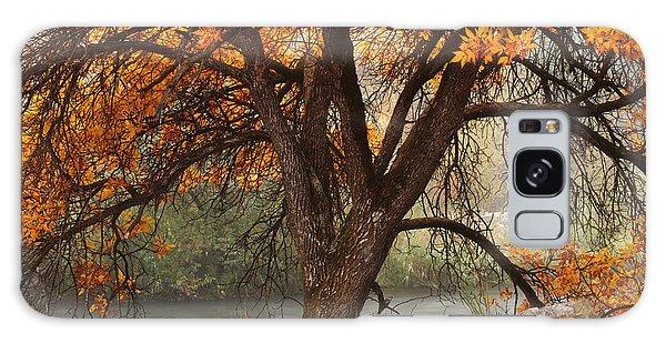 Provo Autumn #1 Galaxy Case