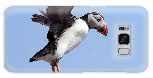 Puffin In Flight Galaxy Case