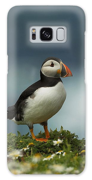 Puffin Galaxy Case by Paul Scoullar