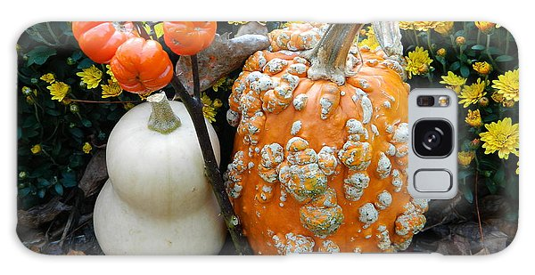Brookside Gardens Galaxy Case - Pumpkin And Squash by Emmy Vickers