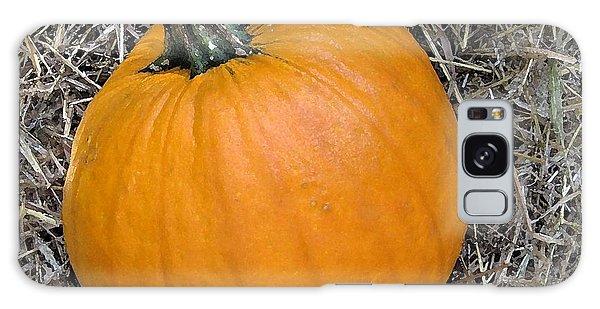 Pumpkin In The Hay Galaxy Case