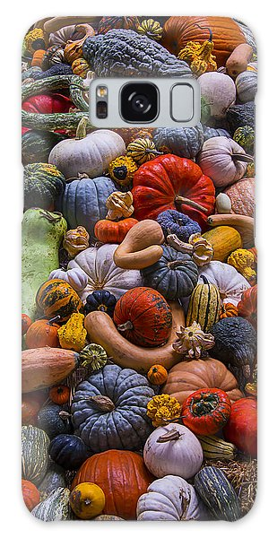 Gourd Galaxy Case - Pumpkins And Gourds Pile by Garry Gay