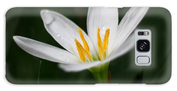 Pure White - Lily Galaxy Case by Ramabhadran Thirupattur