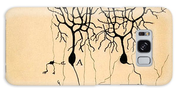 Purkinje Cells By Cajal 1899 Galaxy Case by Science Source