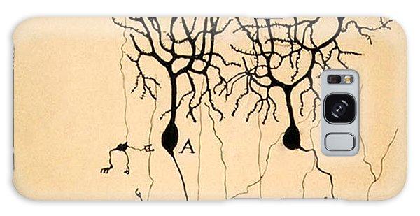 Purkinje Cells By Cajal 1899 Galaxy Case