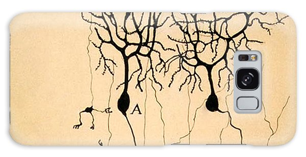 Purkinje Cells By Cajal 1899 Galaxy Case