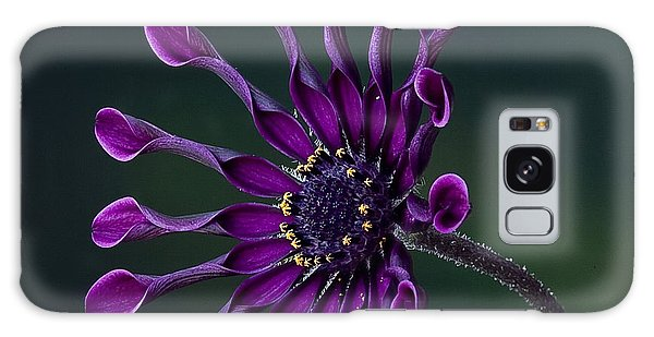 Purple African Daisy Galaxy Case
