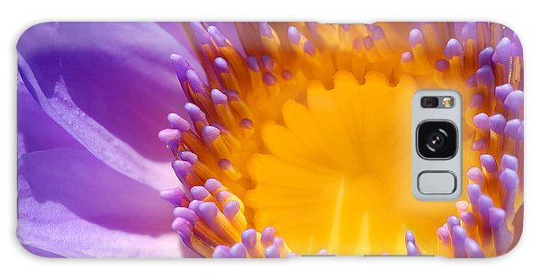 Purple And Yellow Water Lily Close Up Galaxy Case