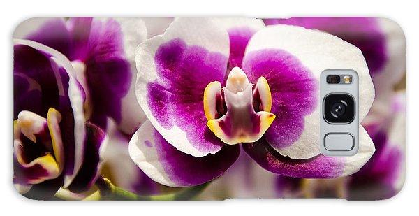 Purple Beauty Galaxy Case by Penny Lisowski