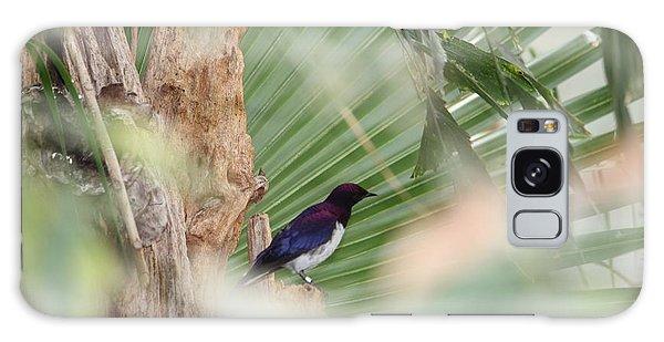 Purple Birs In Trees Galaxy Case