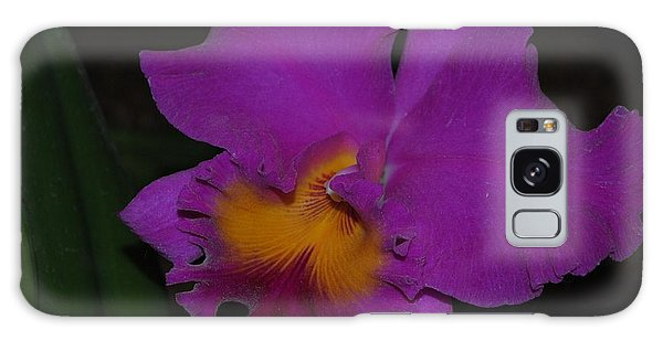 Purple Cattleya Galaxy Case