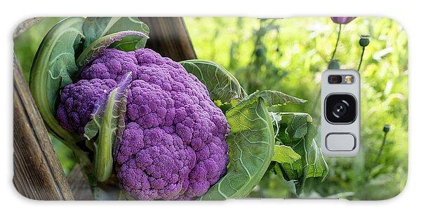 Purple Cauliflower Galaxy Case
