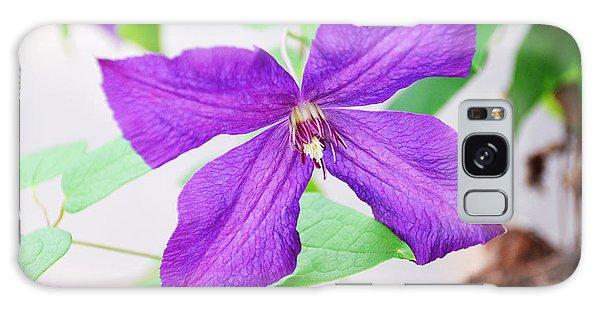 Purple Climbing Vine Galaxy Case