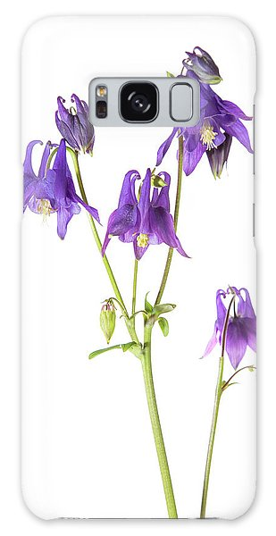 Aquilegia Galaxy Case - Purple Columbine (aquilegia by Richard and Susan Day