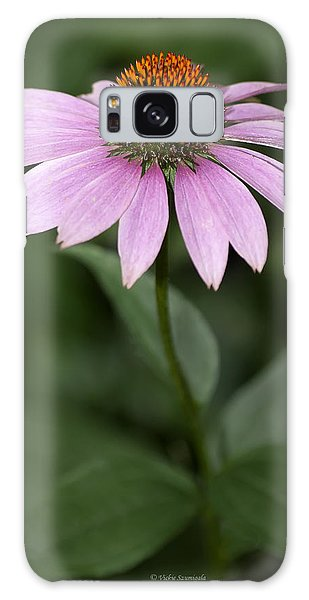 Galaxy Case featuring the photograph Purple Cone Flower by Vickie Szumigala