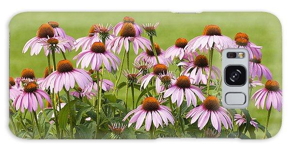 Purple Cone Flowers Galaxy Case
