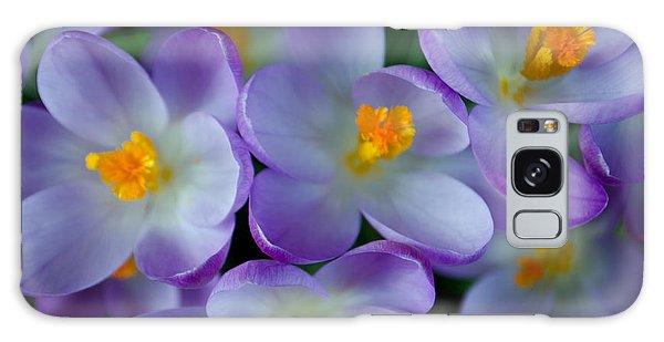 Purple Crocus Gems Galaxy Case