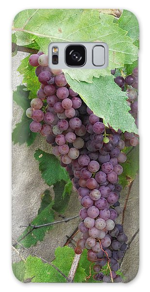 Purple Grapes On The Vine Galaxy Case by Jayne Wilson