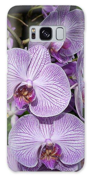 Purple Ladies Galaxy Case by Cindy McDaniel