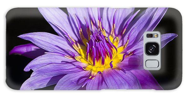 Purple Lilly Galaxy Case by Sean Allen
