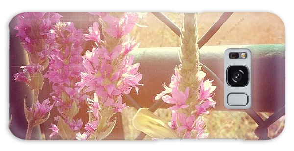 Florals Galaxy Case - Purple Loosestrife by Christy Beckwith