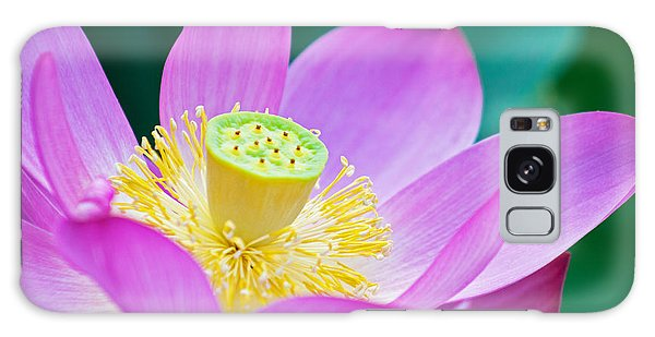 Purple Lotus Blossom Galaxy Case by Michael Porchik