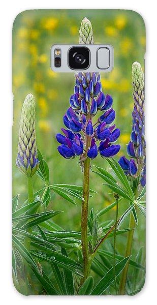 Purple Lupines Galaxy Case